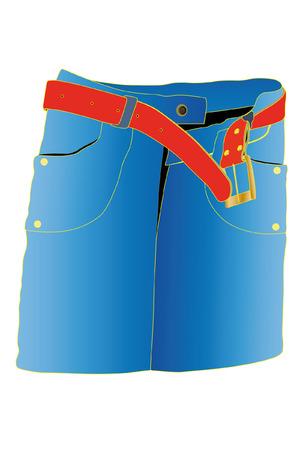 illustration of skirt under the white background Stock Vector - 8753474