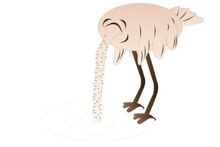 ignorancia: Ilustraci�n vectorial de avestruz hids es cabeza en la arena Vectores