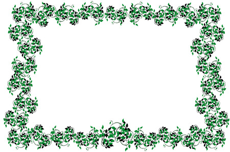 jungle vines: Vector illustration of the Frame from  leaves under the white background
