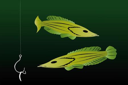 Vector illustration of two fishes under the water Stock Vector - 8859171