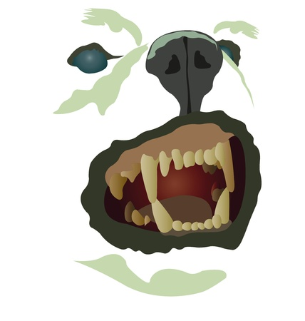 angry dog: Vector illustration of aggressive dog muzzle