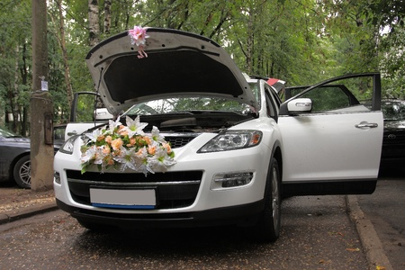 The image of wedding limousine in the garden Stock Photo - 10254570