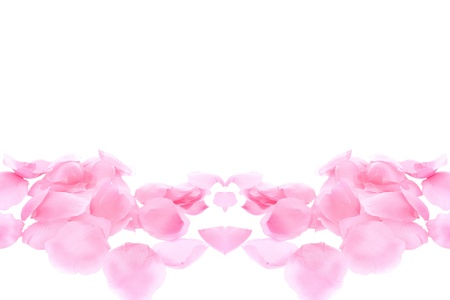 background with a rose petals Stock Photo - 13417639