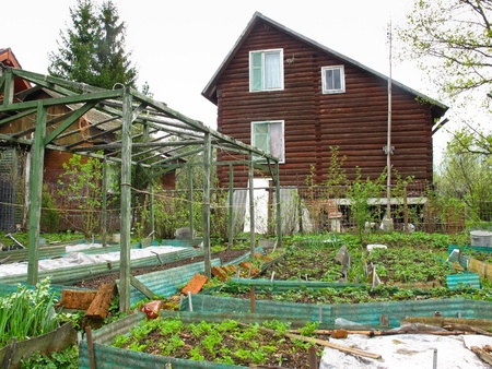 dacha: The image of spring kitchen garden