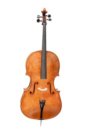 violins: violins under the white background