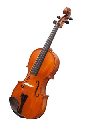 violin background: violins under the white background
