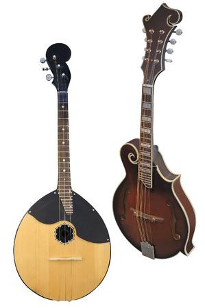 mandolin: mandolin isolated under the white