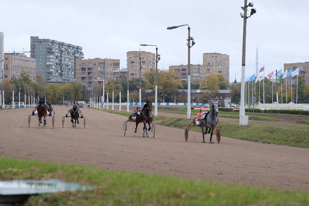 image of a carriage, horse and rider on a horse race at the track