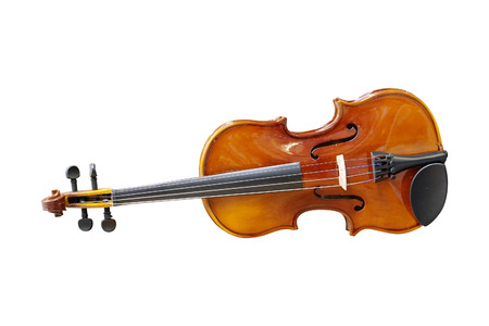 fingerboard: Violin isolated under the white background