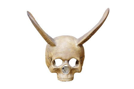 cow teeth: Human skull with bull horns on a white background