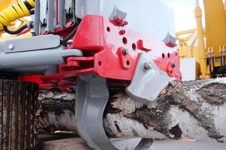 gatherer: The image of treefelling machine Stock Photo