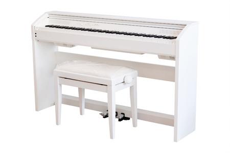 octaves: sintezators  in a music shop
