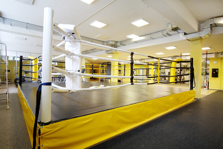 grapple: Interior of a boxing ring