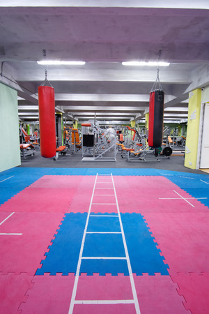 grapple: Interior of a fitness hall with punching bags Stock Photo