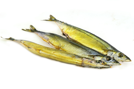 Pacific saury isolated