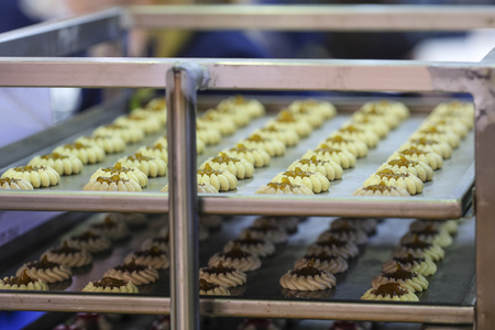 biscuit  production in a bakery