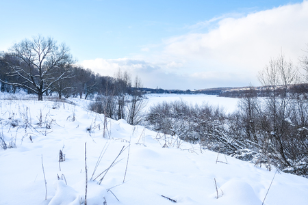 Landscape with the image of winter wood Stock Photo