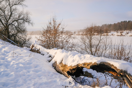 Landscape with the image of winter meadow