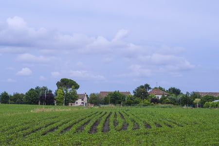 Farm in Rovigo, Italy