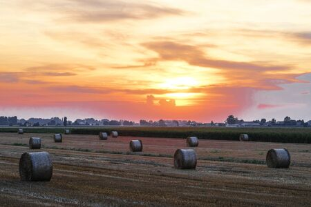 Landscape with the image of sunset in italian countryside Reklamní fotografie