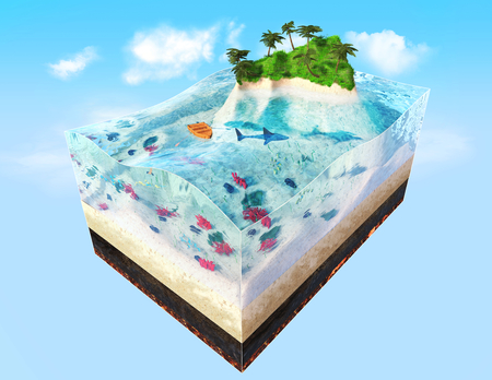 3d illustration of piece of tropical island with water, fishes, corals, palms in cross section. Travel illustration