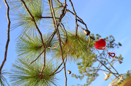 under heart: Bell and red ceramic heart hanging under pine tree