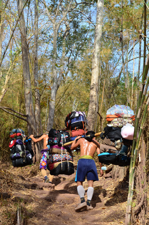 carrying heavy: Sherpa Porter carrying heavy loads to Phu Kradueng National Park, Loei Province in Thailand