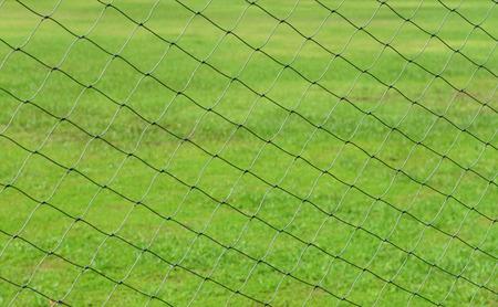 soccer net: Green soccer net texture against green grass field