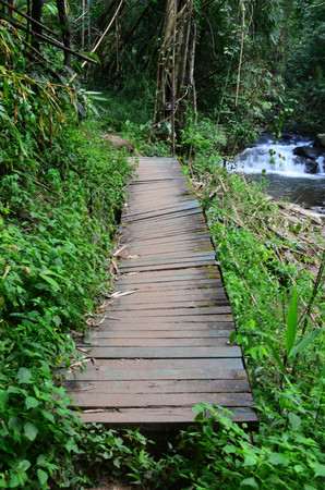 Broken wooden bridge in the forest, near waterfall