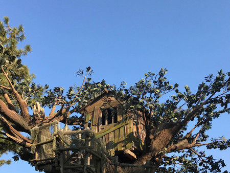 Wooden tree house against blue sky