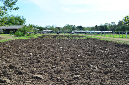 Empty prepared soil for new cultivation with greenhouse nursery background, agriculture concept Stock fotó