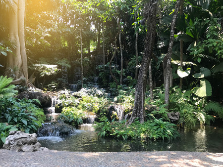 Decorated garden as a small forest and small waterfall with pebble walkway under sun light