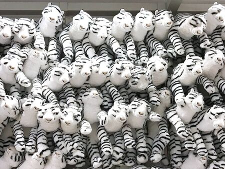 Group of white fluffy tiger  dolls are hanging on wall in toy shop 版權商用圖片