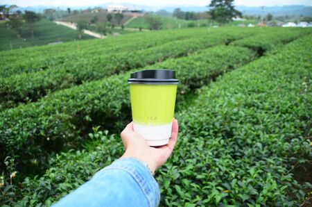 Asian woman hand hold hot paper of green tea cup over green tea plantation background