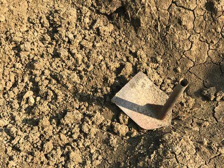 Acorte la azada en el suelo para plantar y cultivar un huerto bajo la luz del sol Foto de archivo