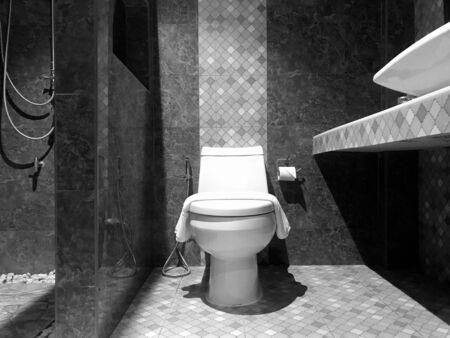 White modern flush toilet bowl against marble wall - bathroom interior, black and white tone