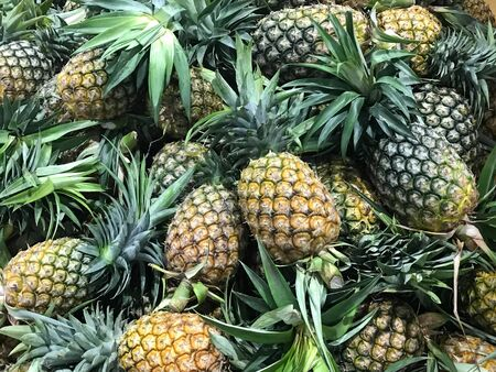 Pile of fresh ripe pineapple, agriculture and food concept