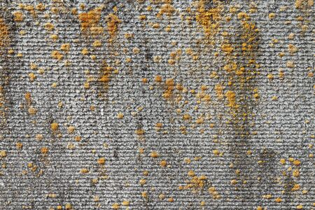 Texture of old concrete with moss. The texture of the old concrete fence. texture of old concrete. Cipher texture with a pattern Banco de Imagens