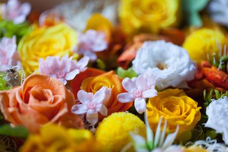 Konservierte Blumennahaufnahme