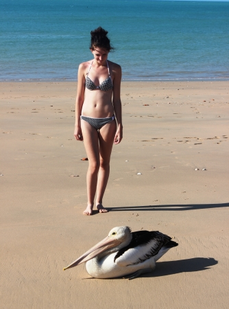 young girl with a pelican photo
