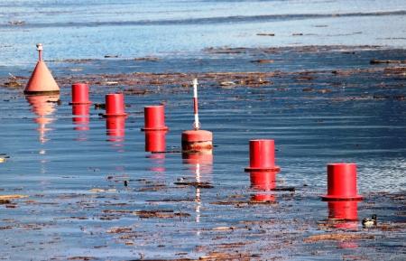 buoys: buoys
