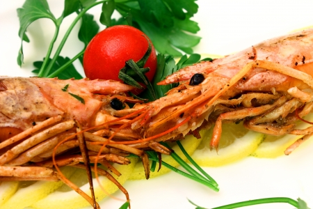 prawns photo