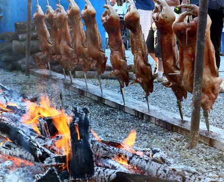 some pigs on the spit photo