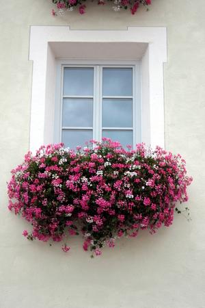 window Banque d'images
