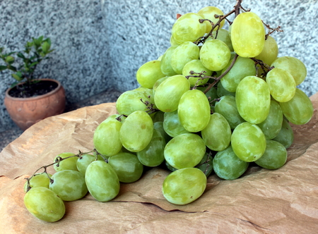 fresh green grapes Archivio Fotografico