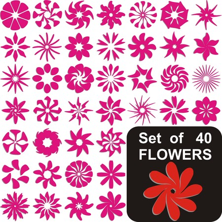 daisywheel: VECTOR -  Set of 40 Flowers