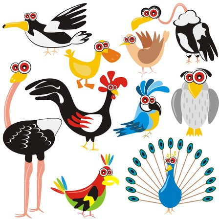 VECTOR - Birds Set - (Peacock, Rooster, Crow, Duck, Ostrich, Parrot, Dove, Eagle, Owl, Gull) - Cartoon Character - These different animals are drawn in cute design - Multi-use illustration Vettoriali