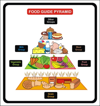 VECTOR - Food Guide Pyramid - Including Groups ( Grain, Fruit, vegetable, milk, meat, other ) - Useful for School , educational Material, Clinics and Diet