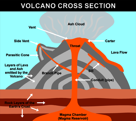 Volcano Cross Section including all parts: magma chamber, reservoir, rock layers of earth crust, conduit, branch pipe, sill, side vent, carter, throat, lava flow, ash cloud, & parasitic cone