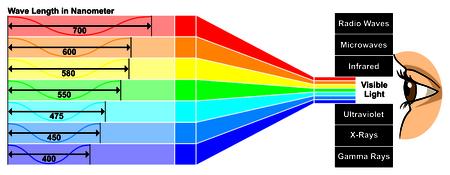 Luce visibile con differenza di lunghezza d'onda tra i colori di spettro che danno proprietà diverse l'occhio umano può vedere lo spettro di colore bianco che è composto da tutti i colori dell'arcobaleno